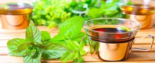 Herbal Thyroid  Treatment